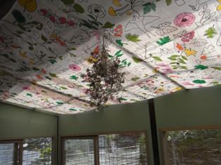 0503_roof.JPG